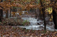 Newly formed Creek (002)