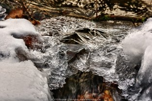 Ice Detail - 2010 (Struble Trail, Downingtown, Chester County PA)