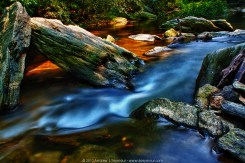 Images from a little creek in Quarryville, Lancaster County PA.