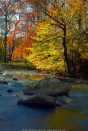 Fall Creek Colors (2011)