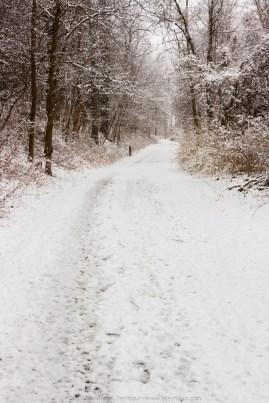 MCSP Dam Spring snow 001