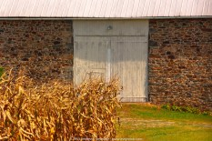 Barn in the Corn fields