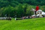Radnor Hunt Races 040