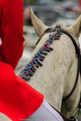 Radnor Hunt Races 140