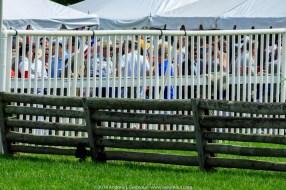 Radnor Hunt Races 199