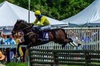 Radnor Hunt Races 214