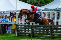 Radnor Hunt Races 228