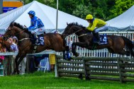 Radnor Hunt Races 240