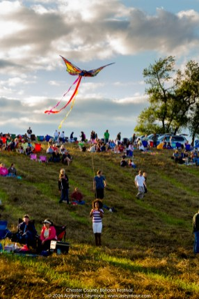 Colorful Kite Flying 009