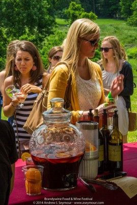 Brandywine Food Wine Fest 153