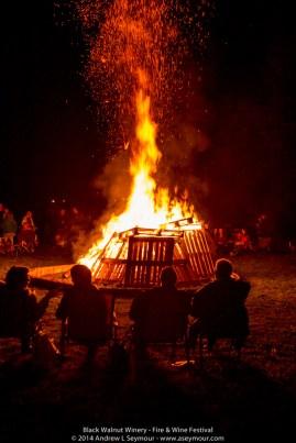 Fire & Wine Festival 097