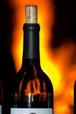 Fire & Wine Festival 134