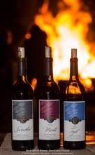 Fire & Wine Festival 136