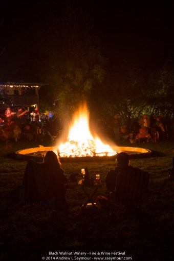 Fire & Wine Festival 301