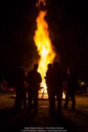Fire & Wine Festival 493