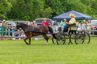 Carriages of Radnor Hunt 080