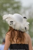 Hats of Radnor Hunt 223