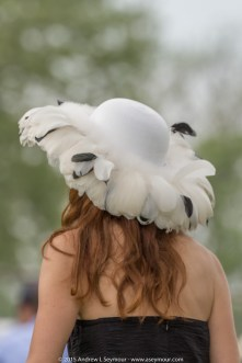 Hats of Radnor Hunt 223