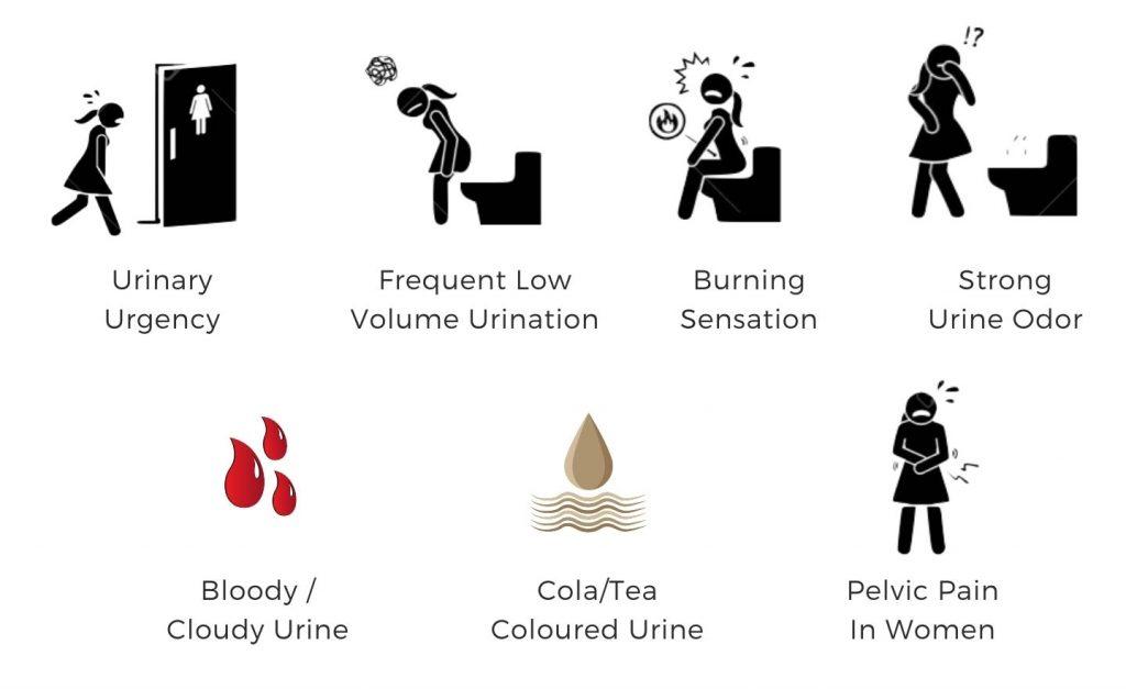 Symptoms of Lower Tract UTIs