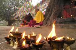 A Buddhist monk below a Bodhi tree.