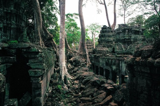 Ta Prohm - The Tomb Raider Temples