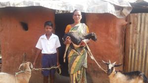 Ziegenprojekt für verarmte Witwen in Kurtumgarh (Foto: Ashakiran)