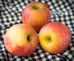 Everything about Fuji Apples