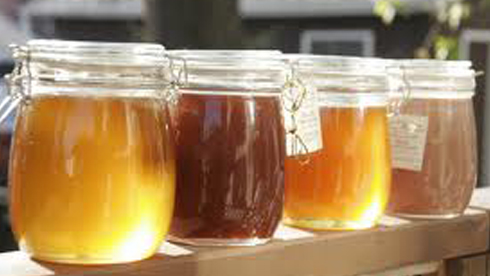 """""""Eating Honey was a very good thing to do…"""" W.T. Pooh"""