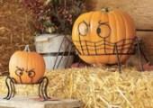 Halloween-2013---Spider-pumpkin-holders