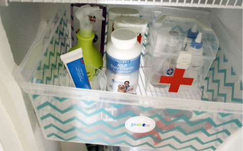 What's in a pet's well stocked medicine cabinet
