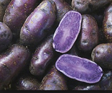 Potatoes---Purple-Peruvians