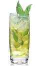 Elderflower non-alcoholic alternative, eanab