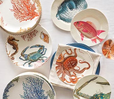 Under the Coral Melamine Plates