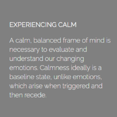Dalai Lama's experiencing-calm