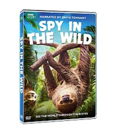 Critter Cams, Spy in the Wild