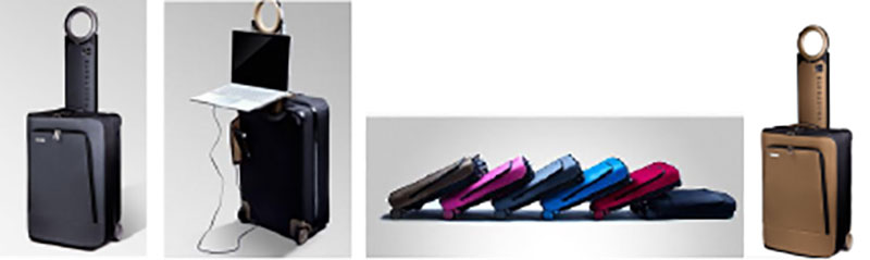 Barracuda Collapsible Carry-on Suitcase