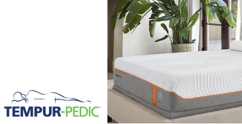 2018 s great new mattresses bed in a box sharp eye