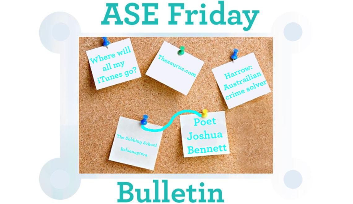Joshua Bennet, Friday Bulletin