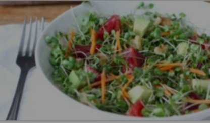 fresh microgreen salad