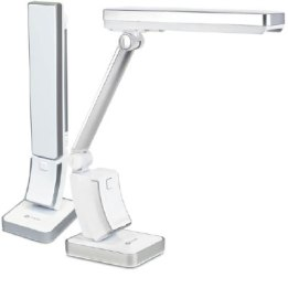 Ottie Slim line desk lamp