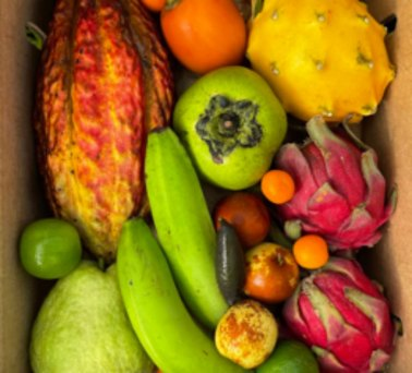 Gifts of Food variety box of In season fruit