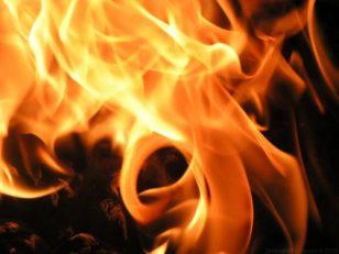 feu pour bruler le hamets