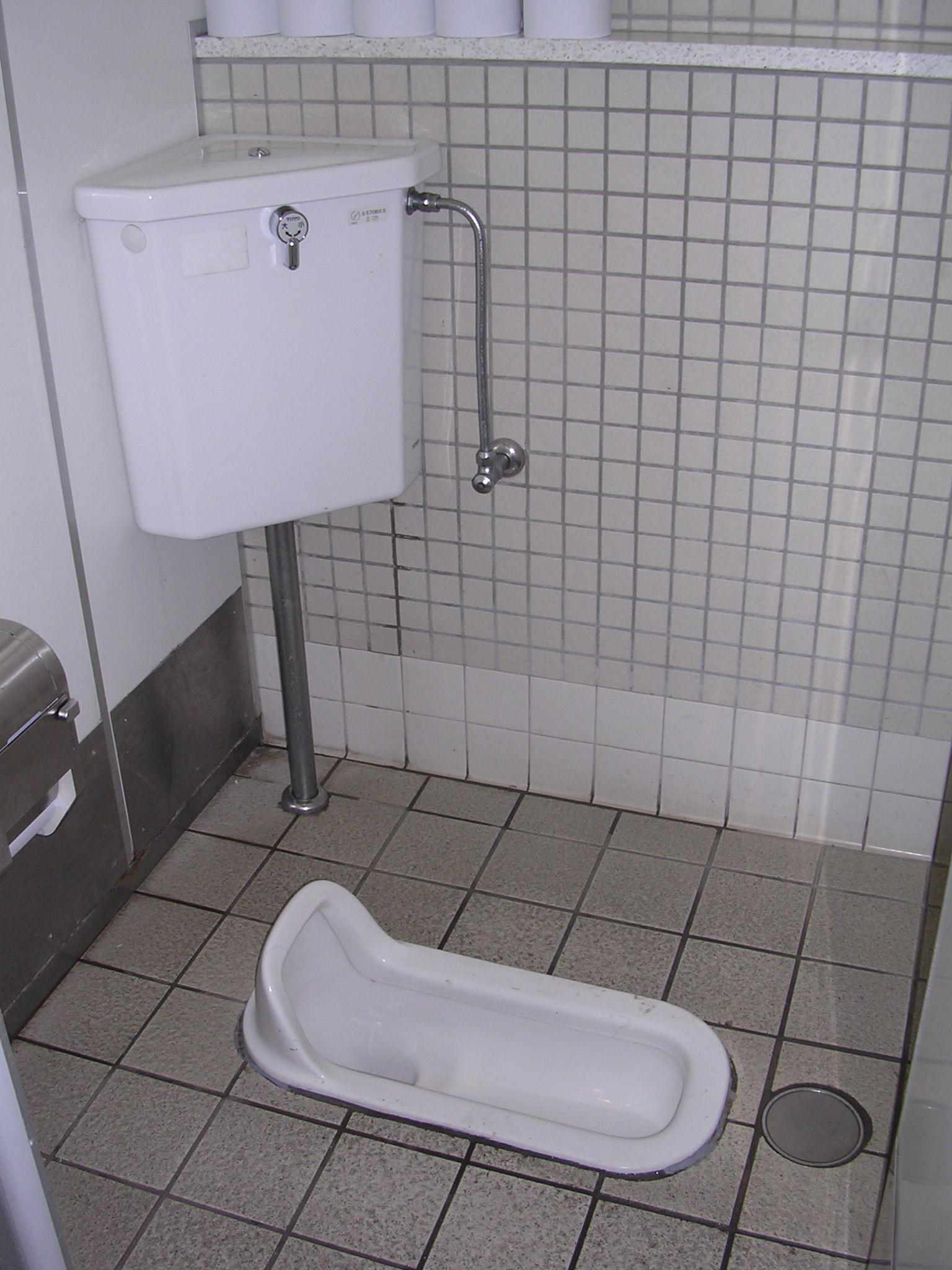 Washiki traditional Japanese toilet  Asheville Butoh