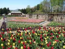 Category Biltmore Estate - Asheville Vacation Homes