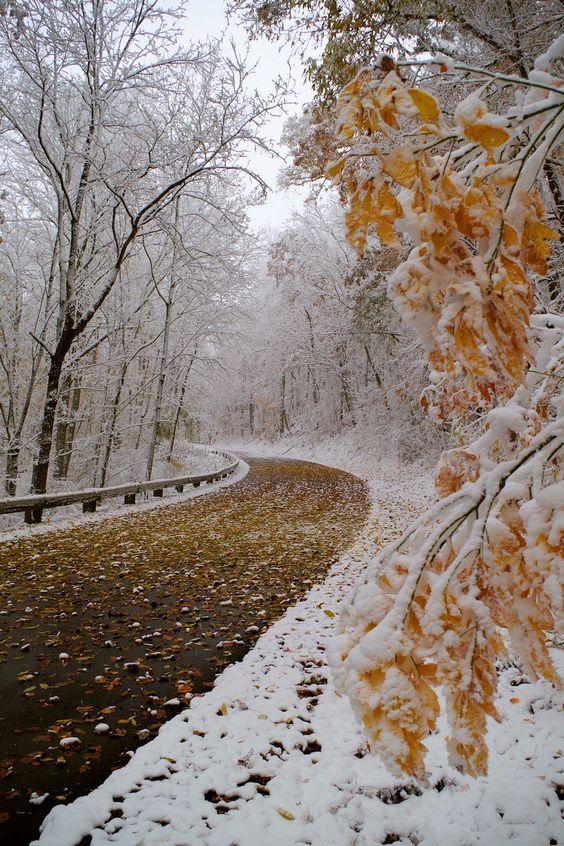 Vacation Rental Cabins Asheville North Carolina  Snow on