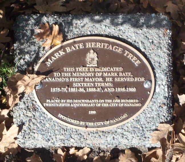 Mark Bate Heritage Tree commemorative marker