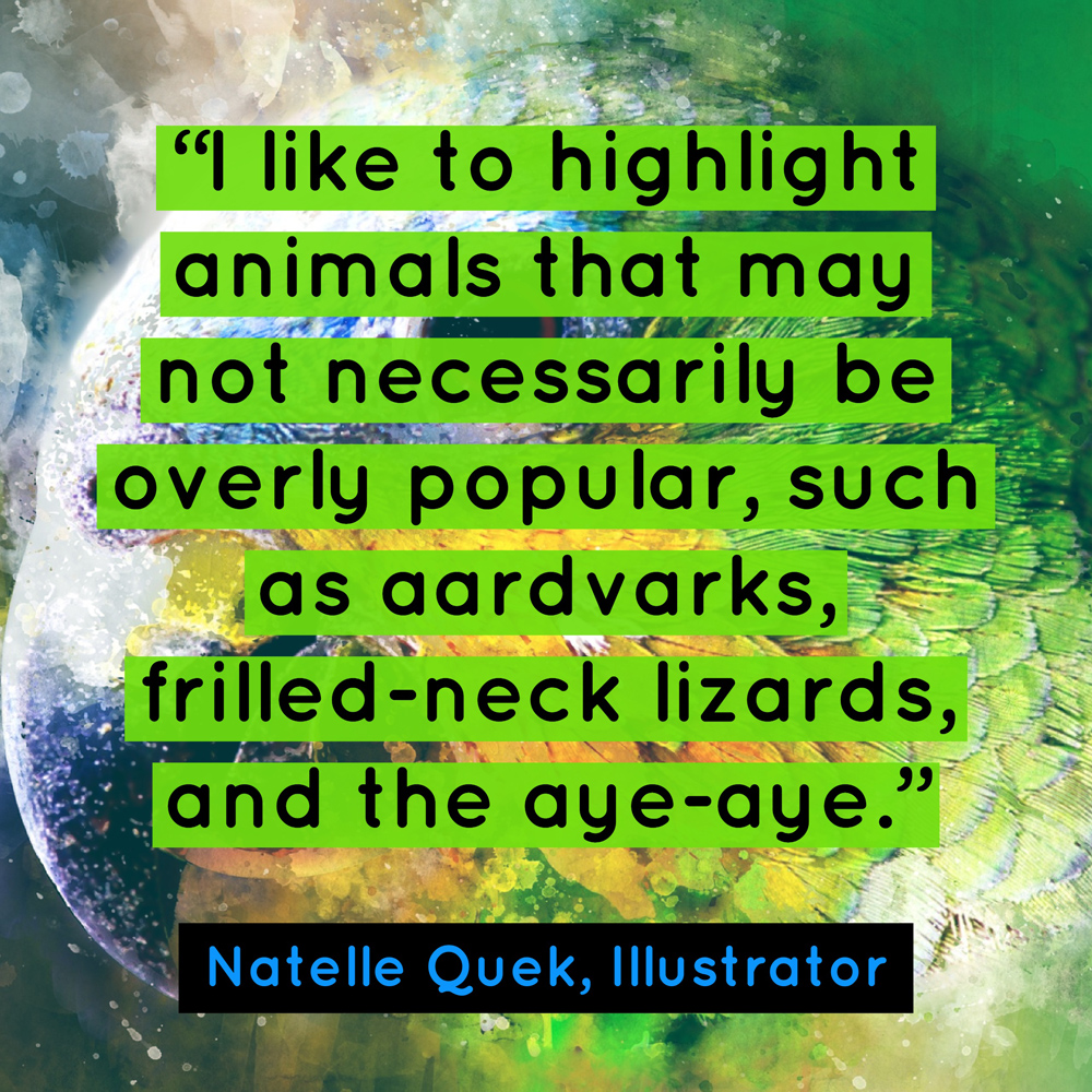 """I like to highlight animals that may not necessarily be overly popular, such as aardvarks, frilled-neck lizards, and the aye-aye."" - Natelle Quek, NatelleDraws"