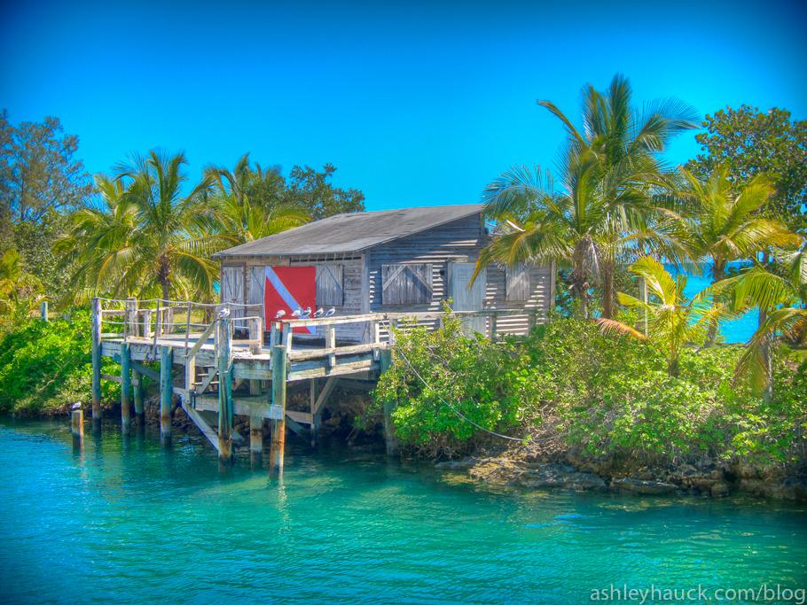 Stuart Cove's Dive Hut