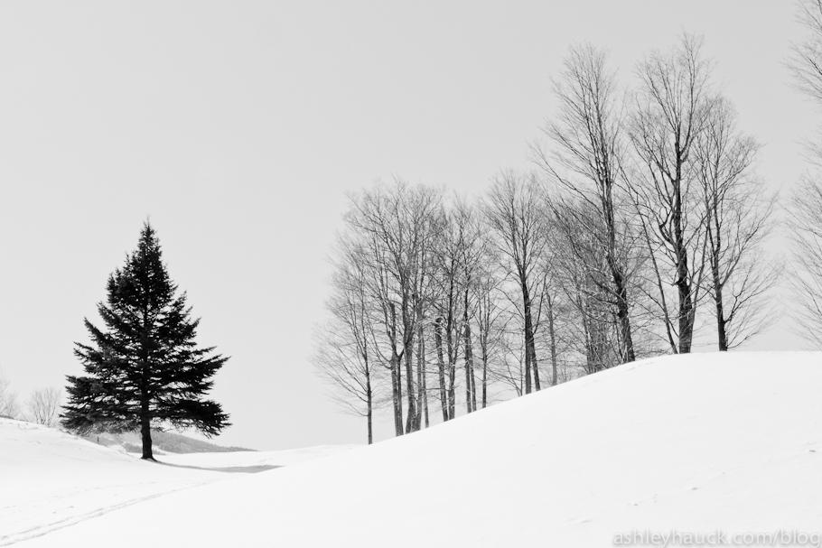 Killington Golf Course in Winter