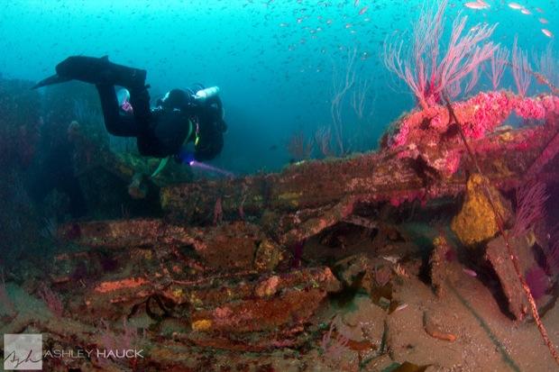USS_Hogan_Wreck_19